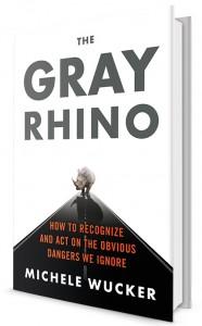 thegrayrhino 3D cover